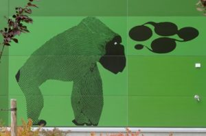 Green Steni facade with a gorilla illustration in black